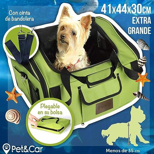 Transportín plegable de tela para gatos y perros pequeños, ideal ...