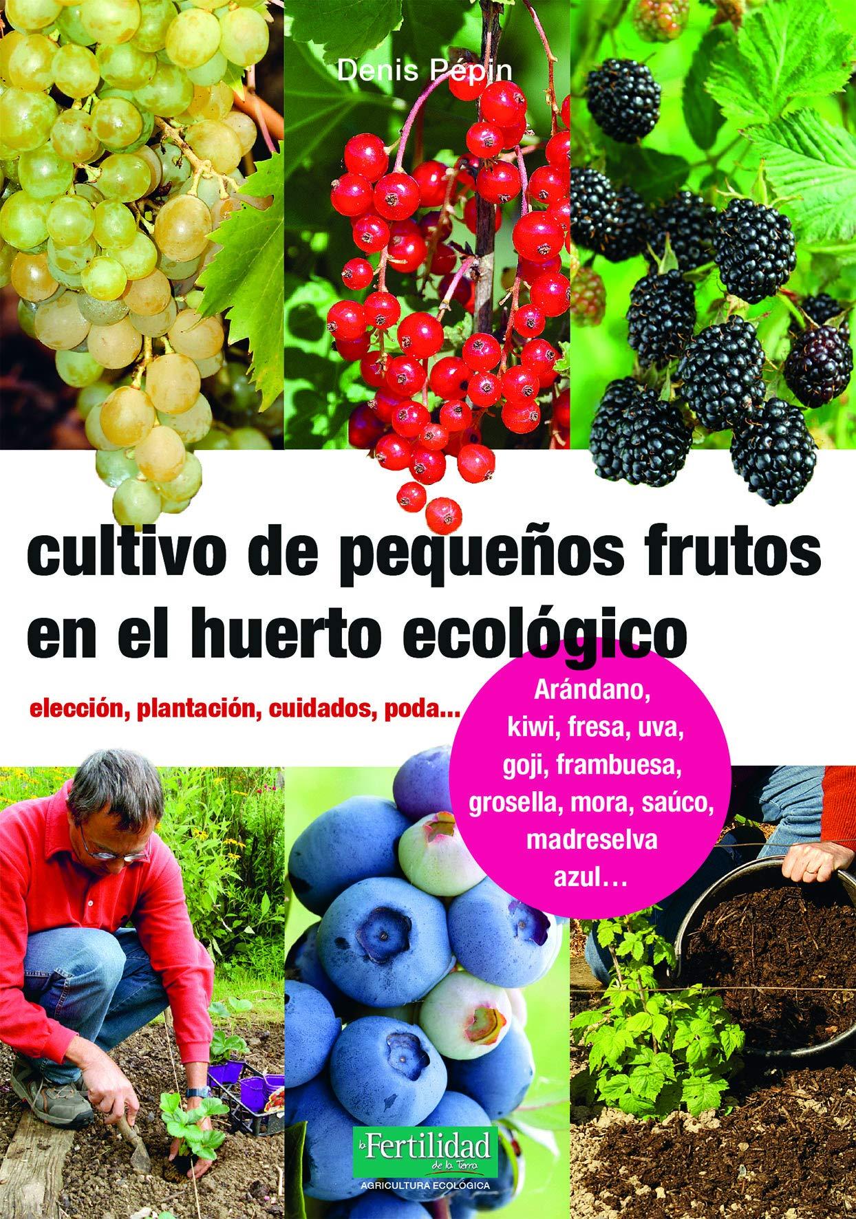Cultivo de pequeños frutos en el huerto ecológico: Elección ...