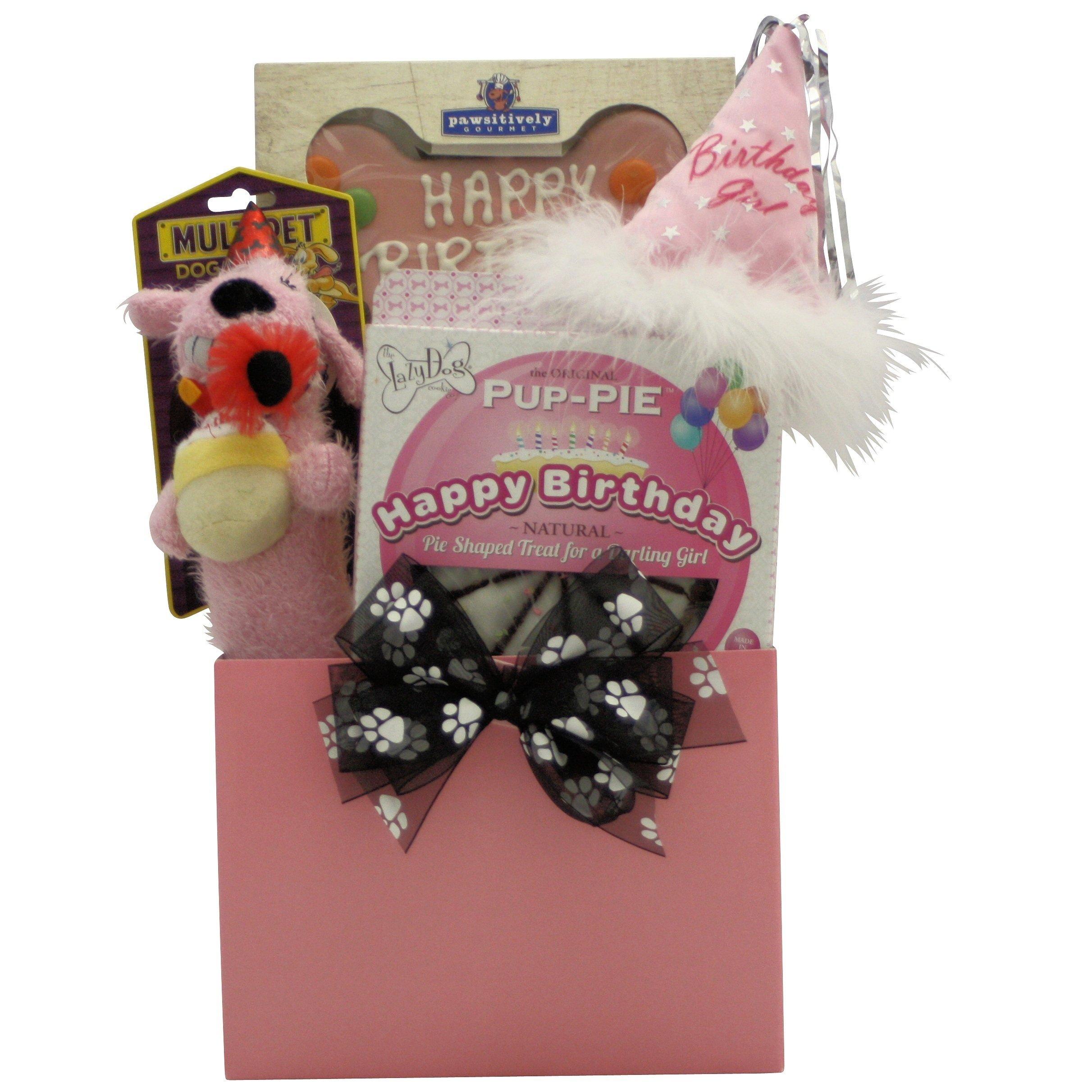 GreatArrivals Gift Baskets 1 Piece Happy Birthday Darling Girl! Pet Dog Birthday Gift Basket, 2 lb by GreatArrivals Gift Baskets (Image #1)
