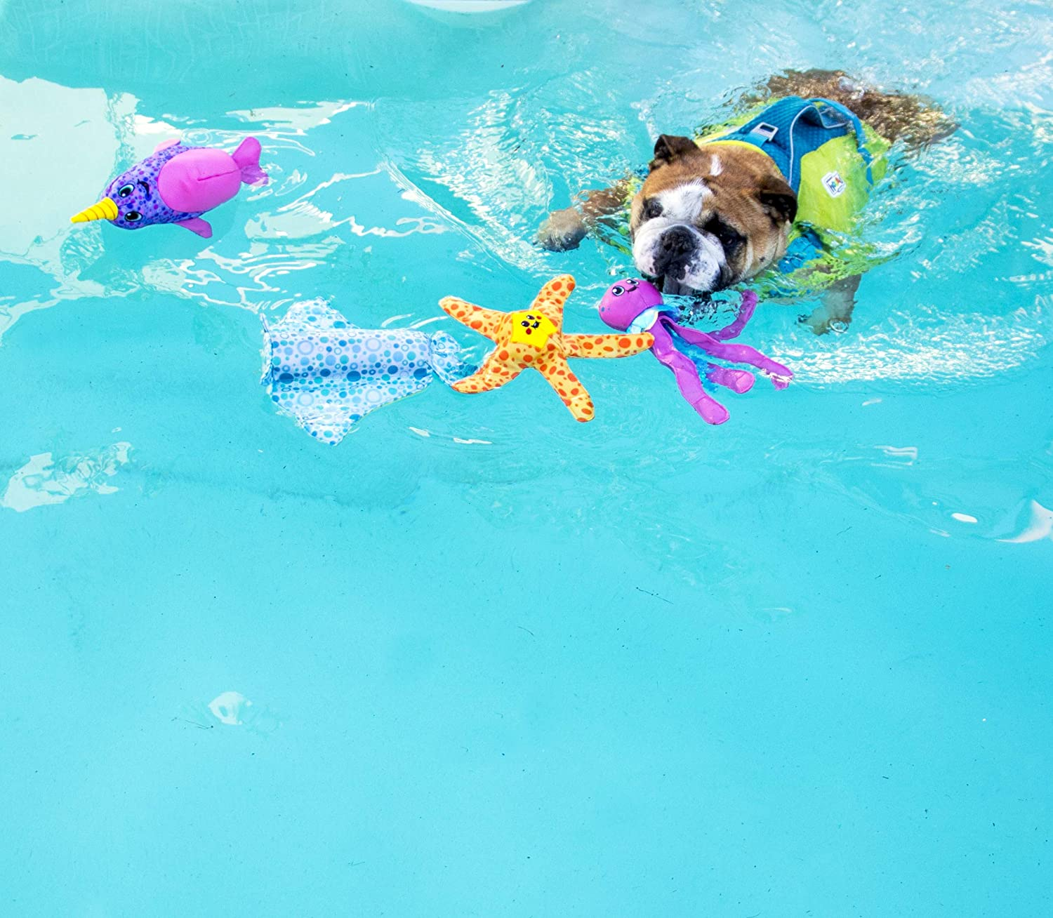 Outward Hound Floatiez Dog Toy