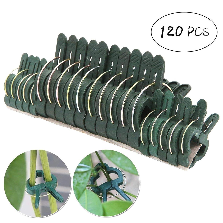 Piccola e Grande COMEYOU 120 Pezzi Supporto per Piante da Giardino Clip per picchetti Clip per Fiori per Piante Clip da Giardino Steli di Supporto Viti Coltivazione Verticale