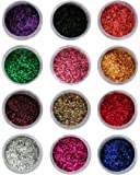 Vozwa Sparkling Nail Art Glitter Powder Set 12 Pcs (Multicolor) (a10)