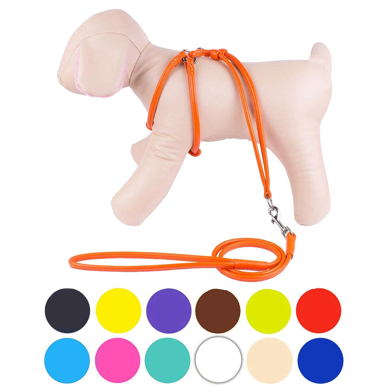 orange XS orange XS CollarDirect Rolled Leather Dog Harness Small Puppy Step-in Leash Set for Walking Pink Red White bluee Green Black Purple Beige Brown Yellow (orange, XS)