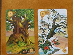 versions - Les différentes versions des  cartes Lenormand - Page 15 815Qc0lCJzL._SL256_