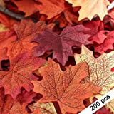 SMYLLS 200pcs Artificial Autumn Maple Leaves, Assorted Colors for Halloween, Fall Weddings & Autumn Parties Decoration (One Size, 4 Assorted Colors)