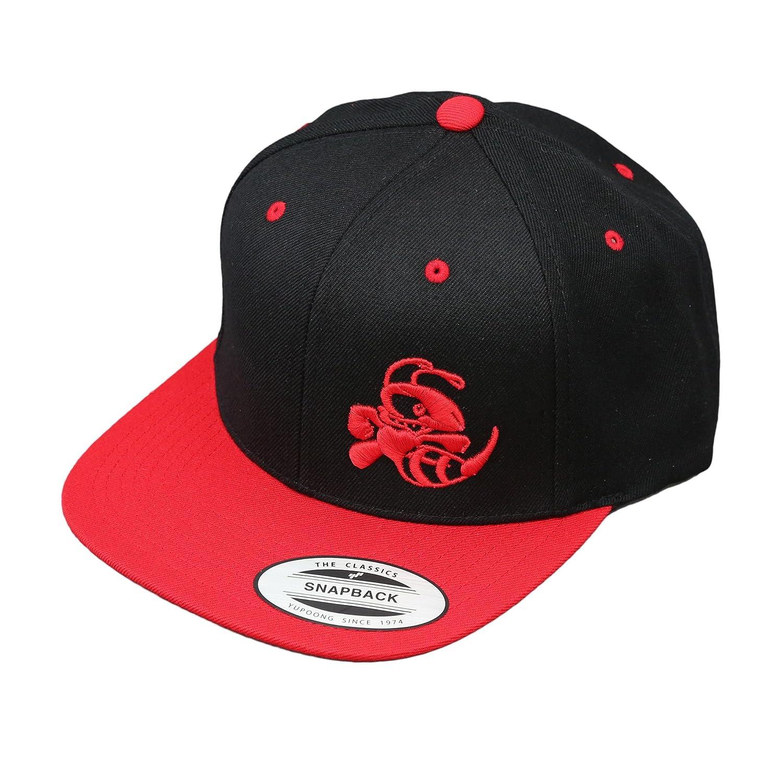 bc5fa17d973 Amazon.com  Discraft Snapback Buzzz Two Tone Hat