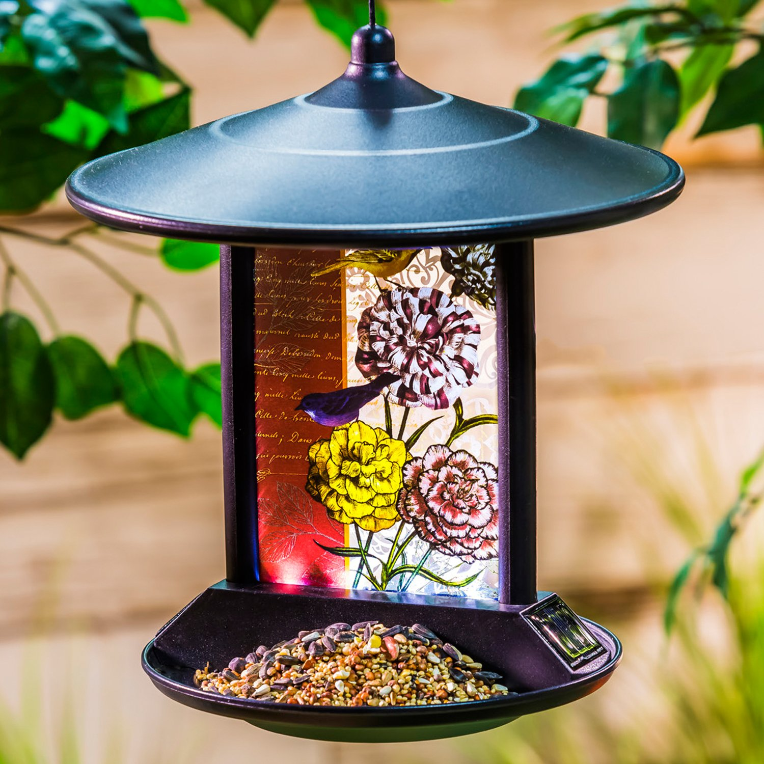 A Ting Solar Powered Hanging Bird Feeder