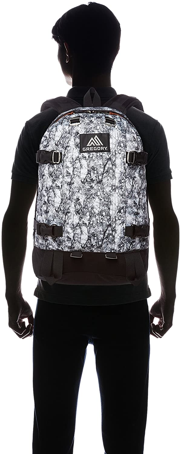 official Wood Camouflage Backpack Daypack Japan import Gregory AllDay