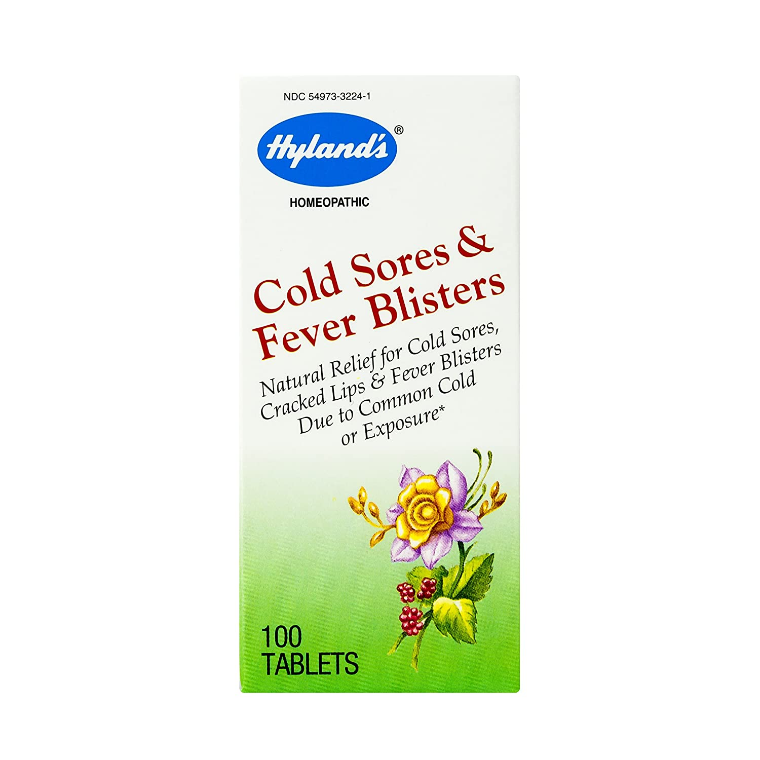 Amazon.com: Cold Sore, Canker Sore, and Fever Blister, Homeopathic  Treatment Medicine by Hyland's, 100 Tablet: Beauty