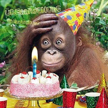 anniversaire humour singe