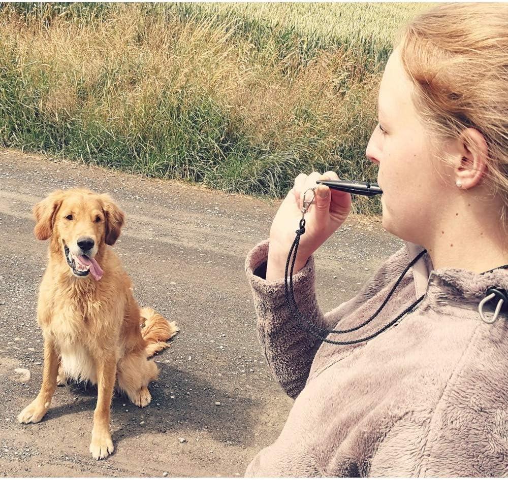ACME Hundepfeife No Trillerpfeife mit Kugel 210 Original aus England Laut und weitreichend Ideal f/ür die Hundeausbildung und das Hundetraining