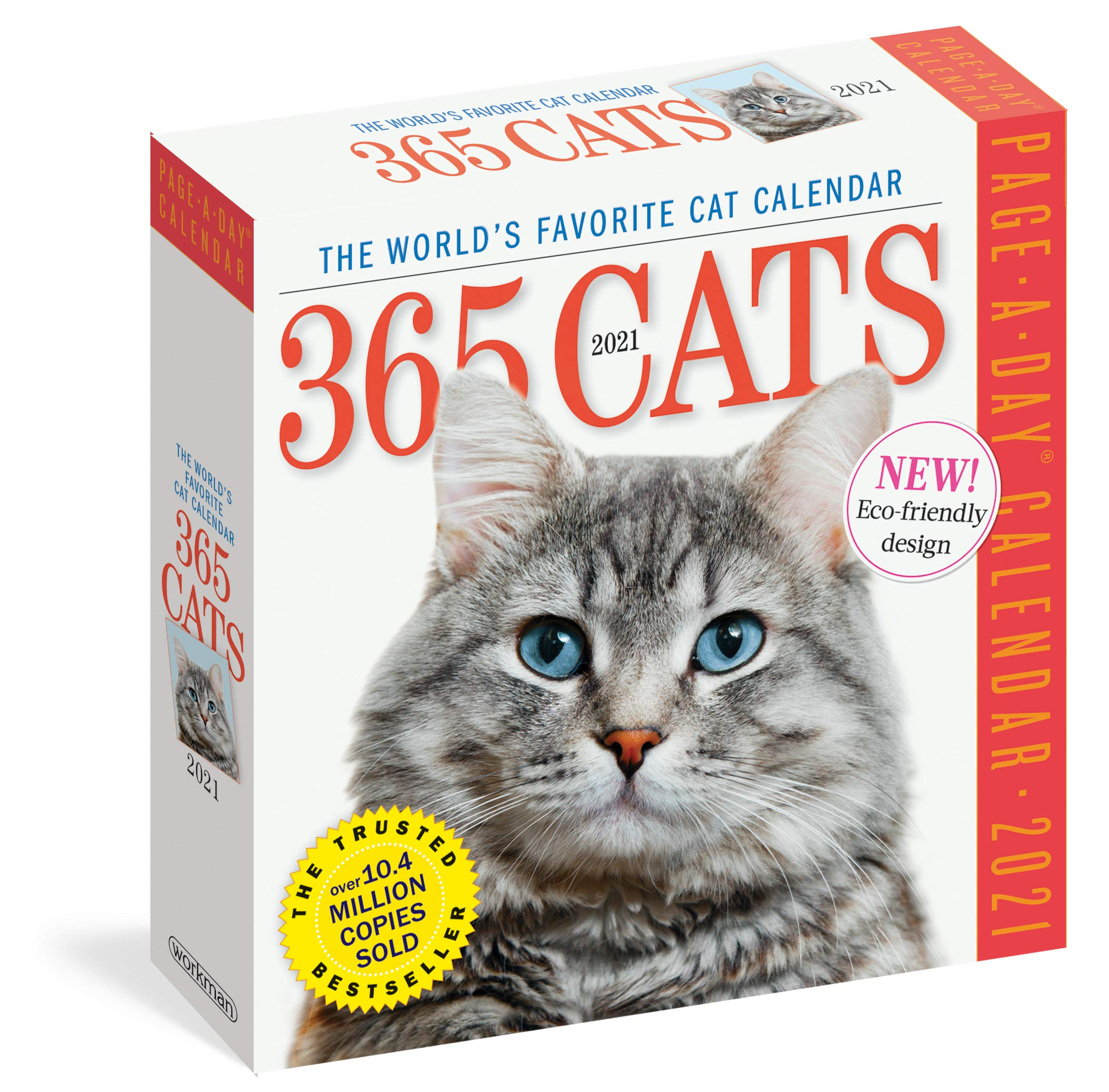 Amazon.com: 365 Cats Page A Day Calendar 2021 (0799234355962