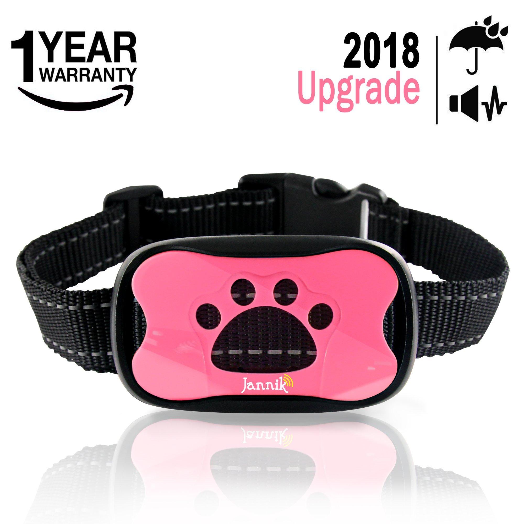 Best Rated In Bark Collars  U0026 Helpful Customer Reviews