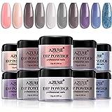 Dip Powder Nails Color Set With 10 PCS Dip Powders Nails No Nail Lamp Needed for French Nail Manicure Nail Art