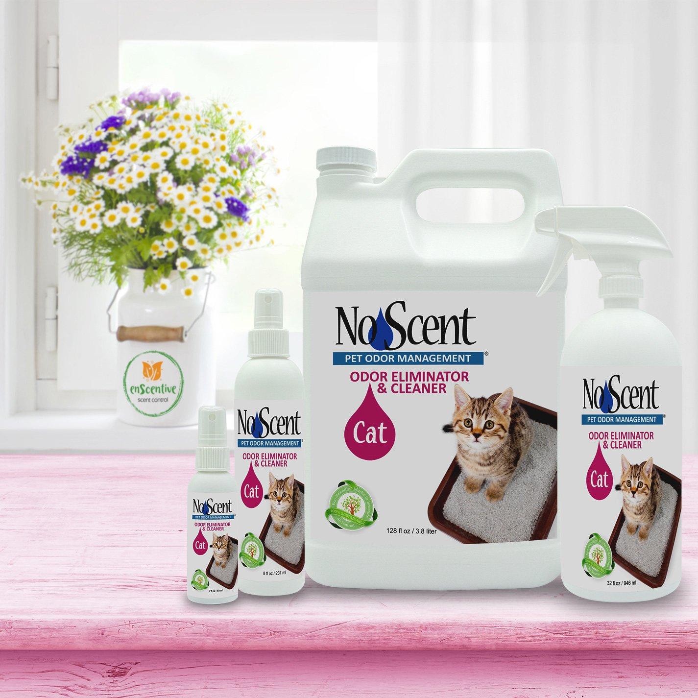 Cavalier Bremworth Carpet Sn Remover Reviews Carpet