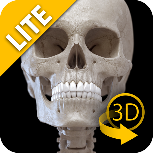 tlas of Anatomy Lite (Interactive Skeleton)