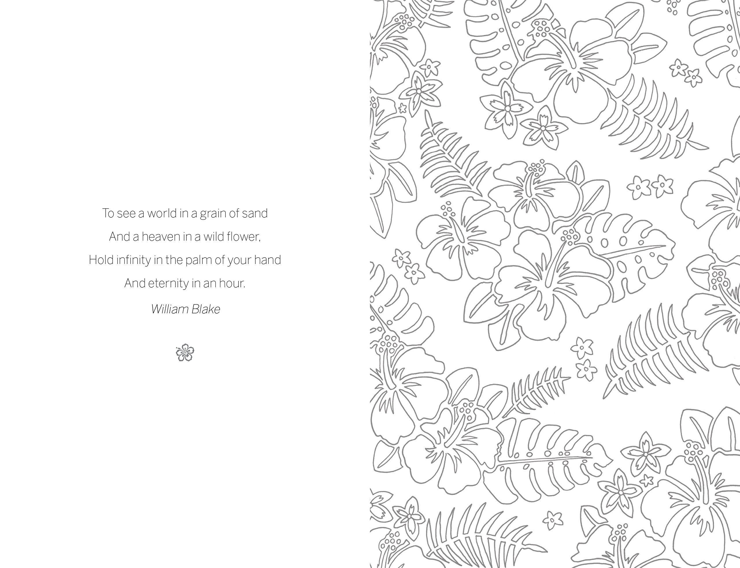 Little book of coloring for mindfulness - The Little Book Of Colouring Tropical Paradise Peace In Your Pocket Amazon Co Uk Peace In Your Pocket Amber Anderson Books