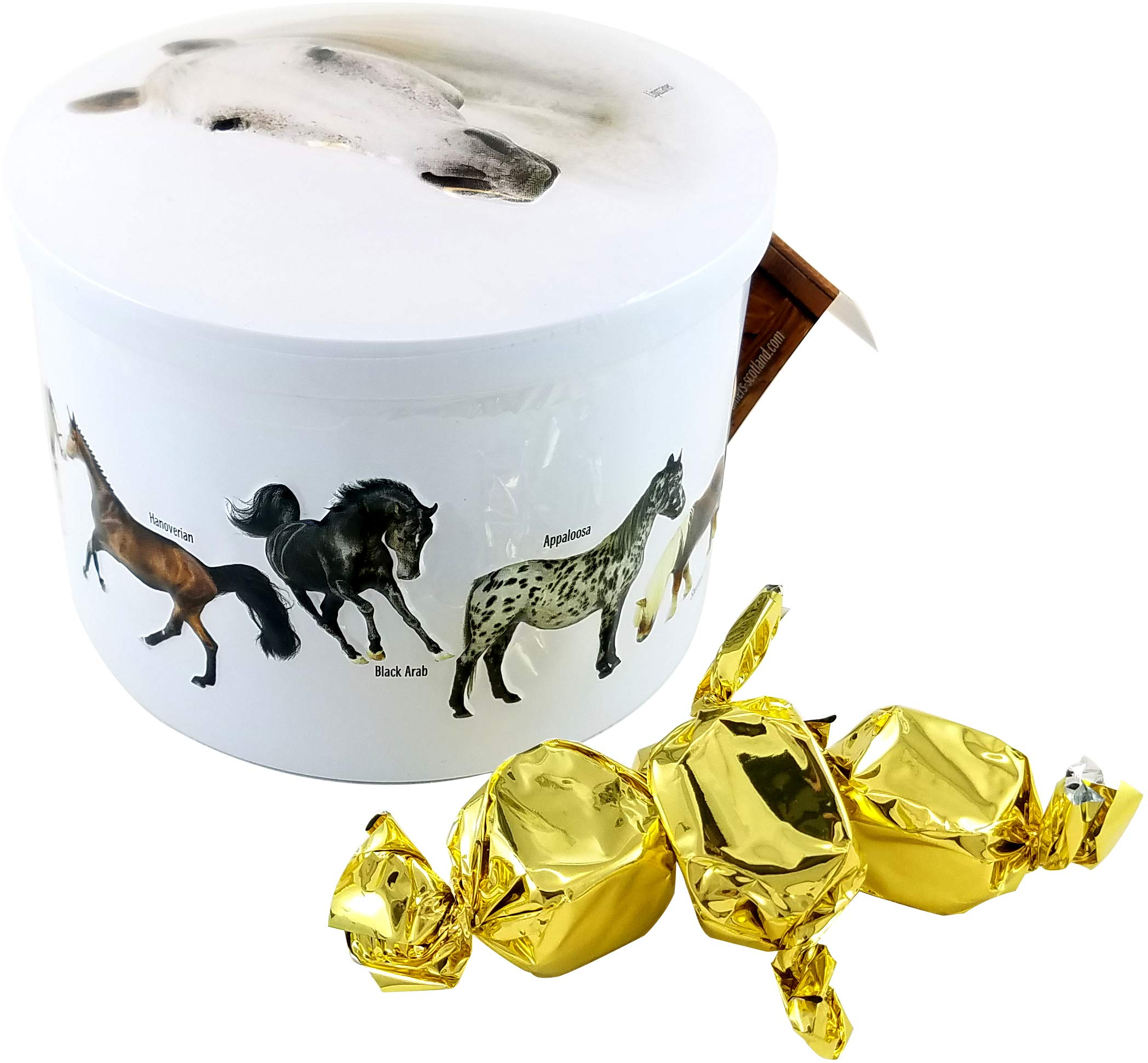 Gardiners Of Scotland Horses Tin filled with Luxury Traditional Scottish Vanilla Fudge, 7 Ounce by Gardiners of Scotland