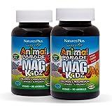 NaturesPlus Animal Parade Source of Life Sugar-Free MagKidz Children's Magnesium Supplement (2 Pack) - Natural Cherry Flavor