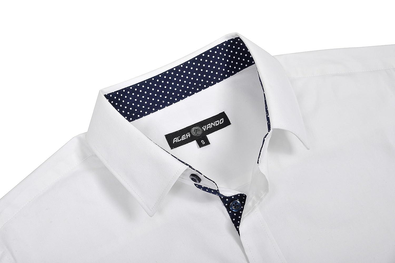 2914e2acf1e Alex Vando Mens Dress Shirts Regular Fit Long Sleeve Men Shirt