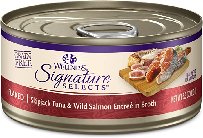 The Best Wellness Signature Selects Cat Food Salmon