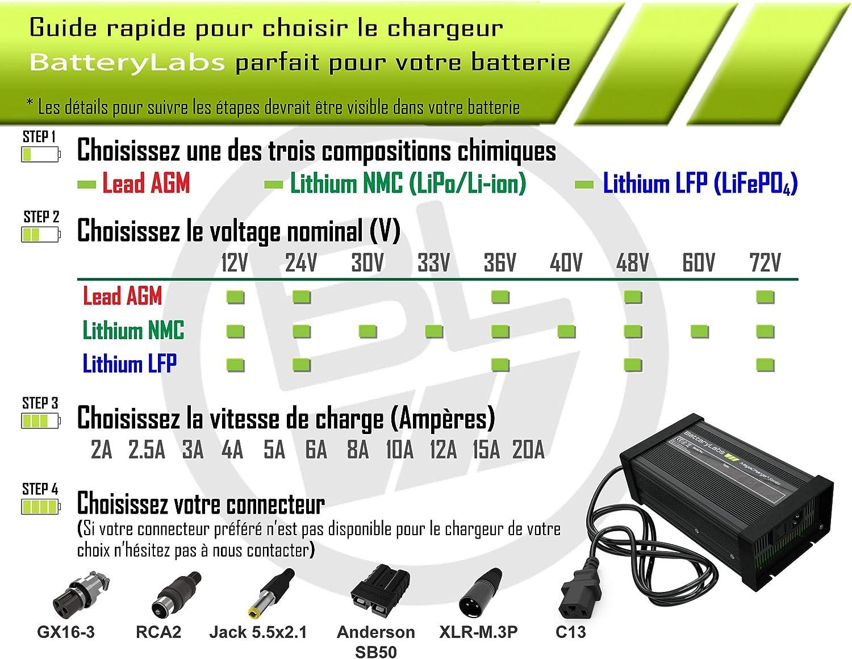 MegaCharge Series BatteryLabs Chargeur de Batterie Lithium LFP 72V pour Voiture /électrique Quad Trottinette Balayeuse autoport/ée v/élo Bicyclette e-Bike Fauteuil /électronique pedelec Auto Bateau