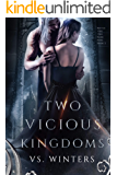 Two Vicious Kingdoms (Battle for The Dark King Book 2)