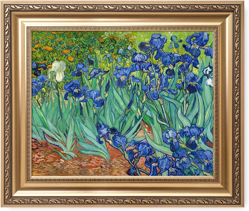 DECORARTS - 'Irises in The Garden', Vincent Van Gogh Classic Art. Giclee Prints Framed Art for Wall Decor. Picture Size: 20x16, Framed Size: 26x22