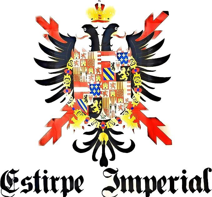 Estirpe Imperial Bandera Cruz de Borgoña Carlos V 150x90cm: Amazon.es: Ropa y accesorios