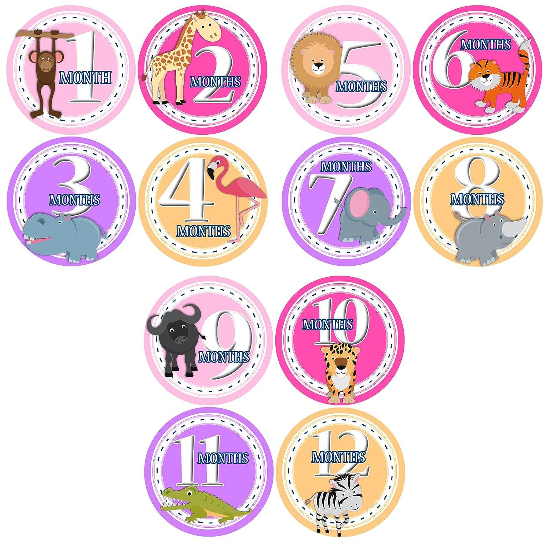 Amazon Monthly esie Sticker Set of 12 SAFARI ANIMALS