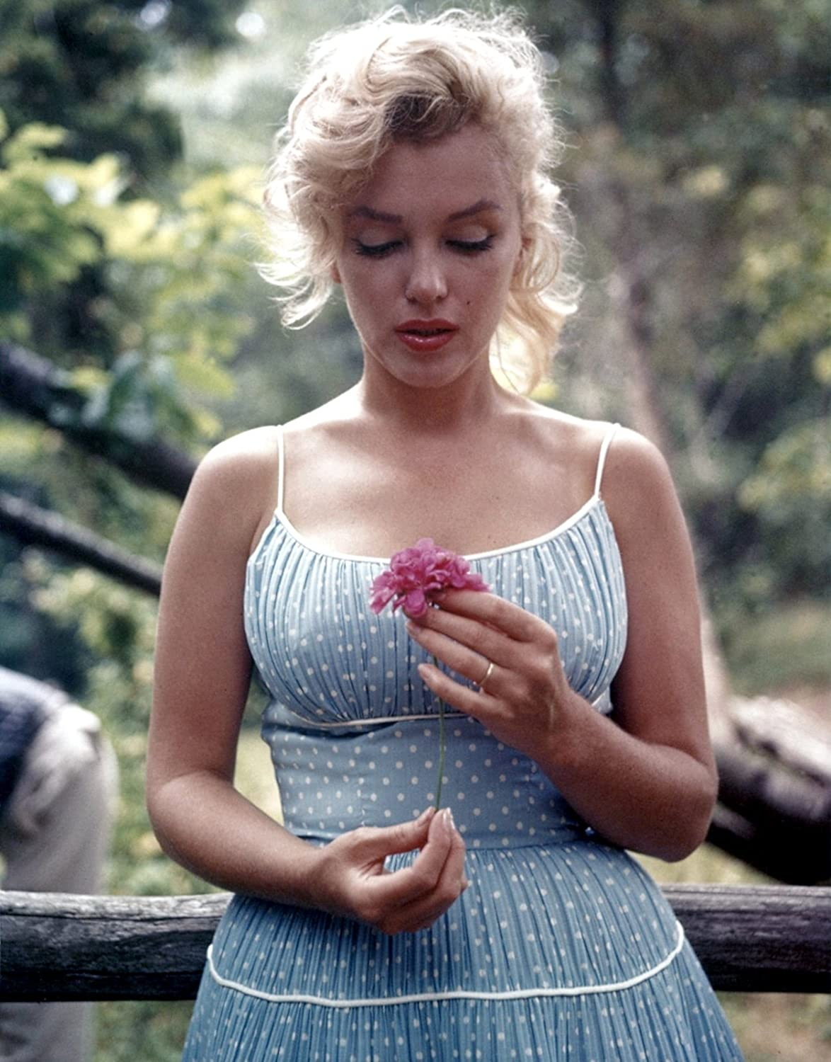 Marilyn Monroe Holding a Flower Color Photo Pinup Girl Hollywood Photos 8x10