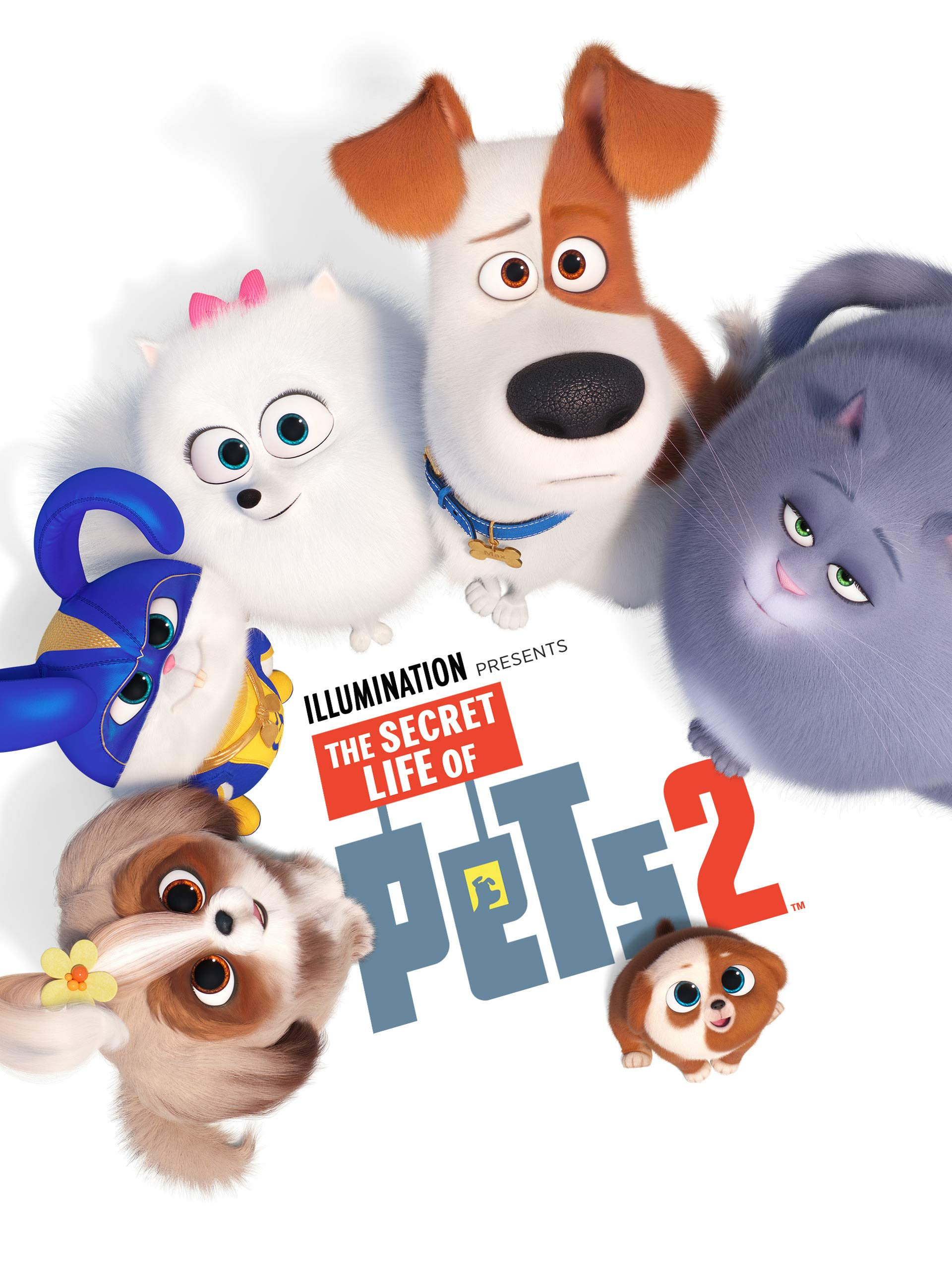 the secret life of pets 2 watch online free