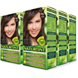 Naturtint Permanent Hair Color 4N Natural Chestnut (Pack of 6), Ammonia Free, Vegan, Cruelty Free, up to 100% Gray…