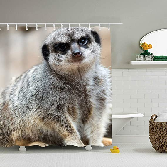 Meerkat Shower Curtain With Hooks For Bathroom Amazon Co Uk Kitchen Home