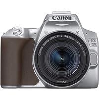 Canon EOS 250D SL 18-55 IS STM Dijital Fotoğraf Makinesi, Gümüş