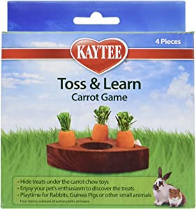 Kaytee Toss & Learn Carrot Game