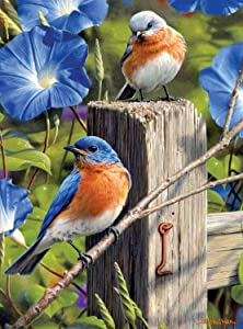"Hautman Brothers, Garden Gate Bluebirds Puzzles for Adults, 1000 Piece Kids Jigsaw Puzzles Game Toys Gift for Children Boys and Girls, 20"" x 30"""