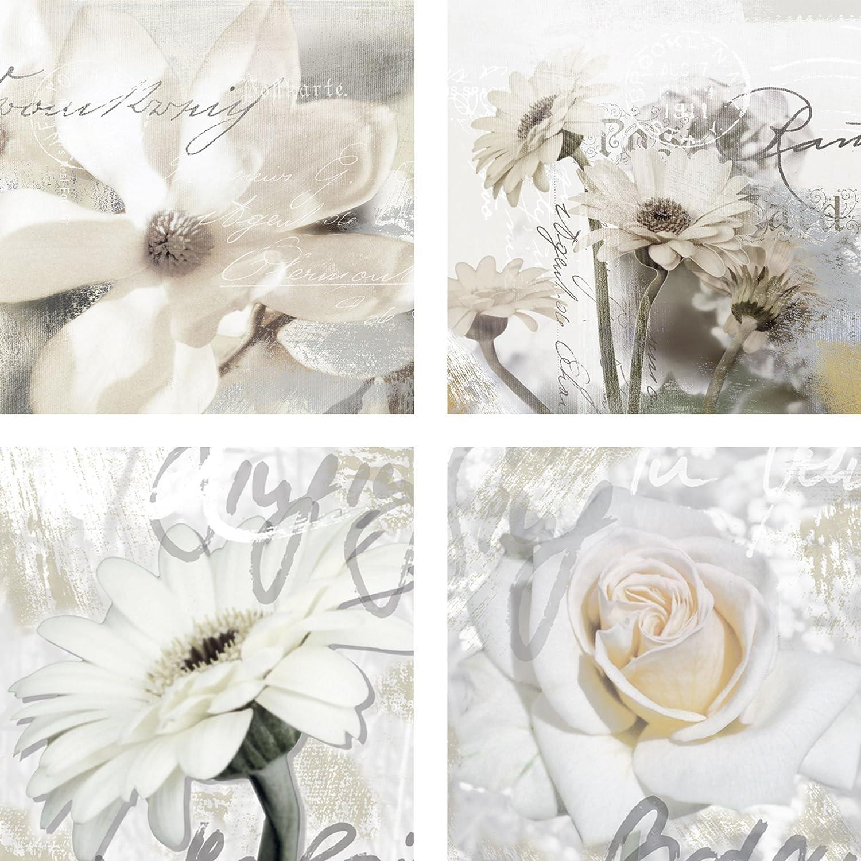 Artland Qualitätsbilder I Glasbilder Deko Glas Bilder 40 x 40 cm mehrteilig Botanik Blumen Collage Weiß F2AU Magnolie. Gerberas. In Buchstaben V_ - Gerbera. In Buchstaben VI_ -Rose_Detail