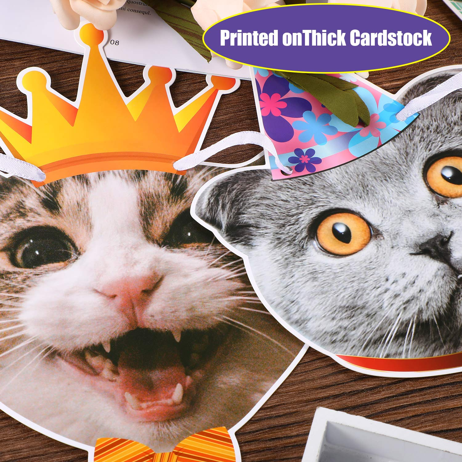 Cat Faces Birthday Banner Cat Birthday Garland Kitties Birthday Party Bunting Decoration for Cat Theme Party Baby Shower