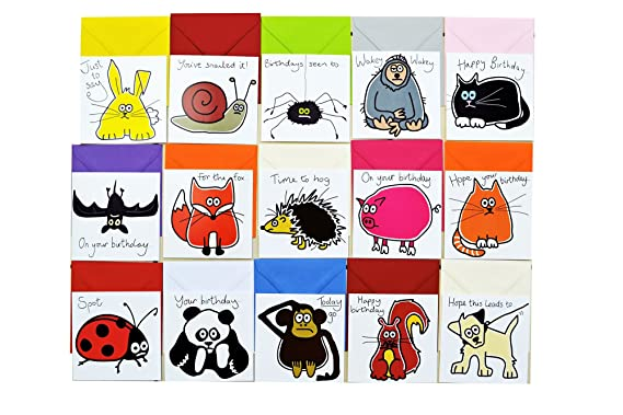 15 X Animal Birthday Cards Bumper Card Pack Amazon Clothing