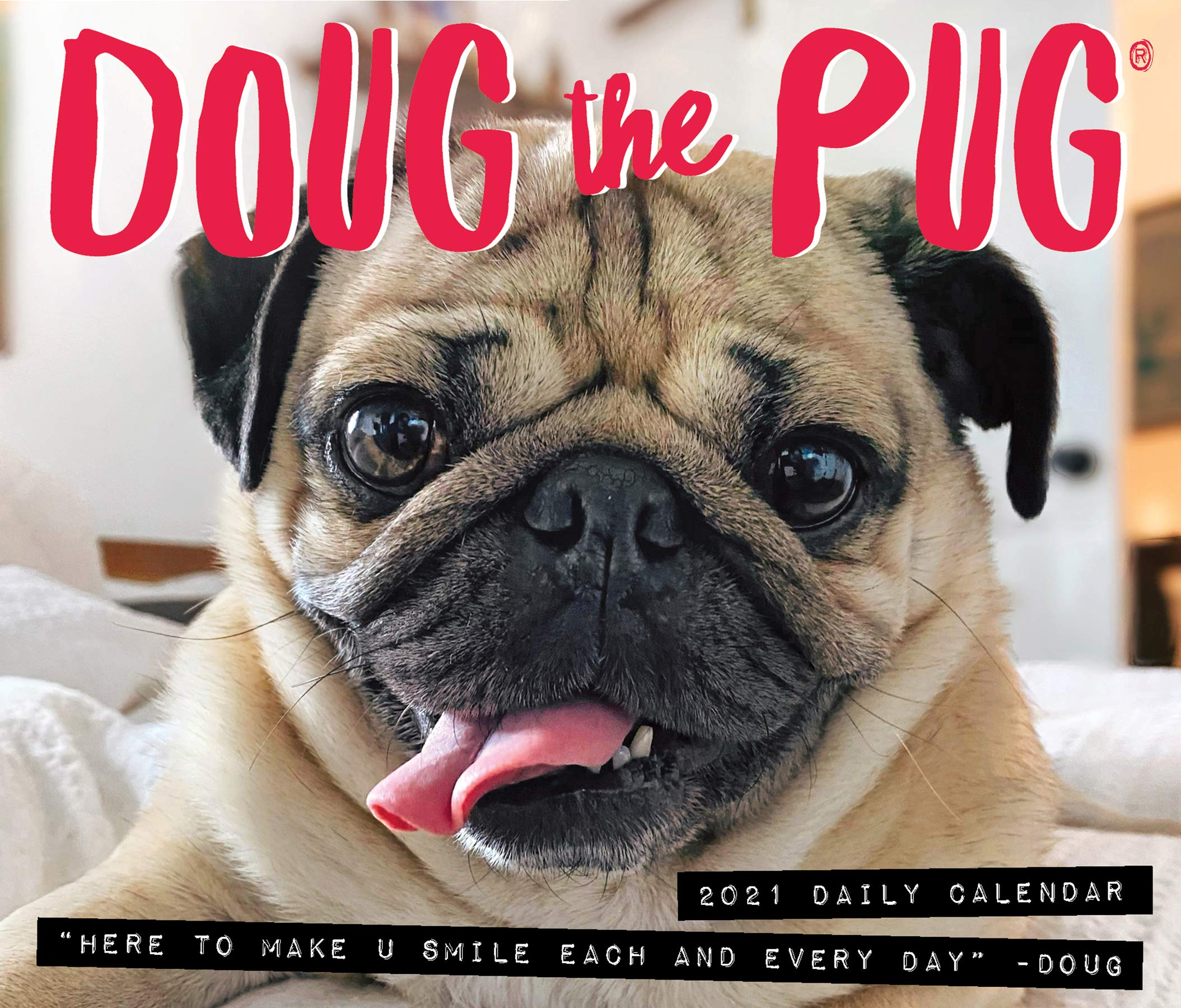 Doug the Pug 2021 Box Calendar (Dog Breed Calendar): Mosier