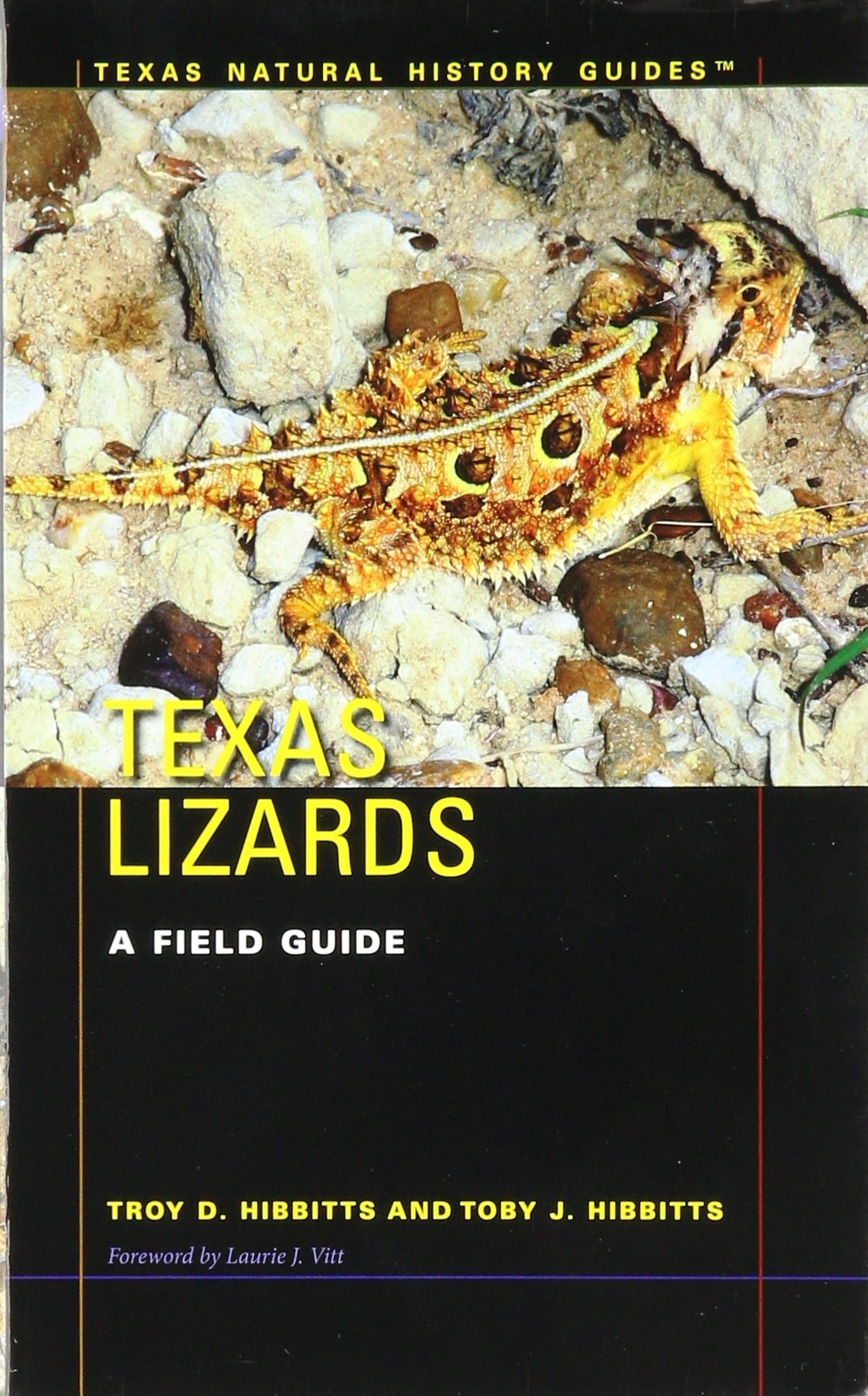 Texas Lizards: A Field Guide (Texas Natural History Guides™)