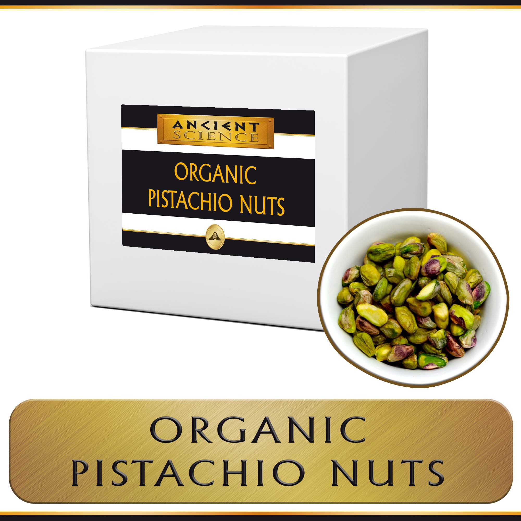 Organic Raw Pistachio Nuts Bulk 5 LB Wholesale Supplier Kosher