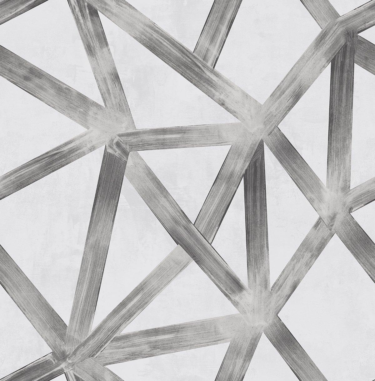 Zebra Wallpaper Interstellar (Graphite) White Black Gray Silver Cool Abstract Modern Contemporary Graphics