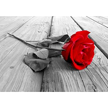 SENSATIONSPREIS Fototapete Blumen Rose Holz Rot Grau 396 X 280 Cm Vlies  Wand Tapete Wohnzimmer Schlafzimmer