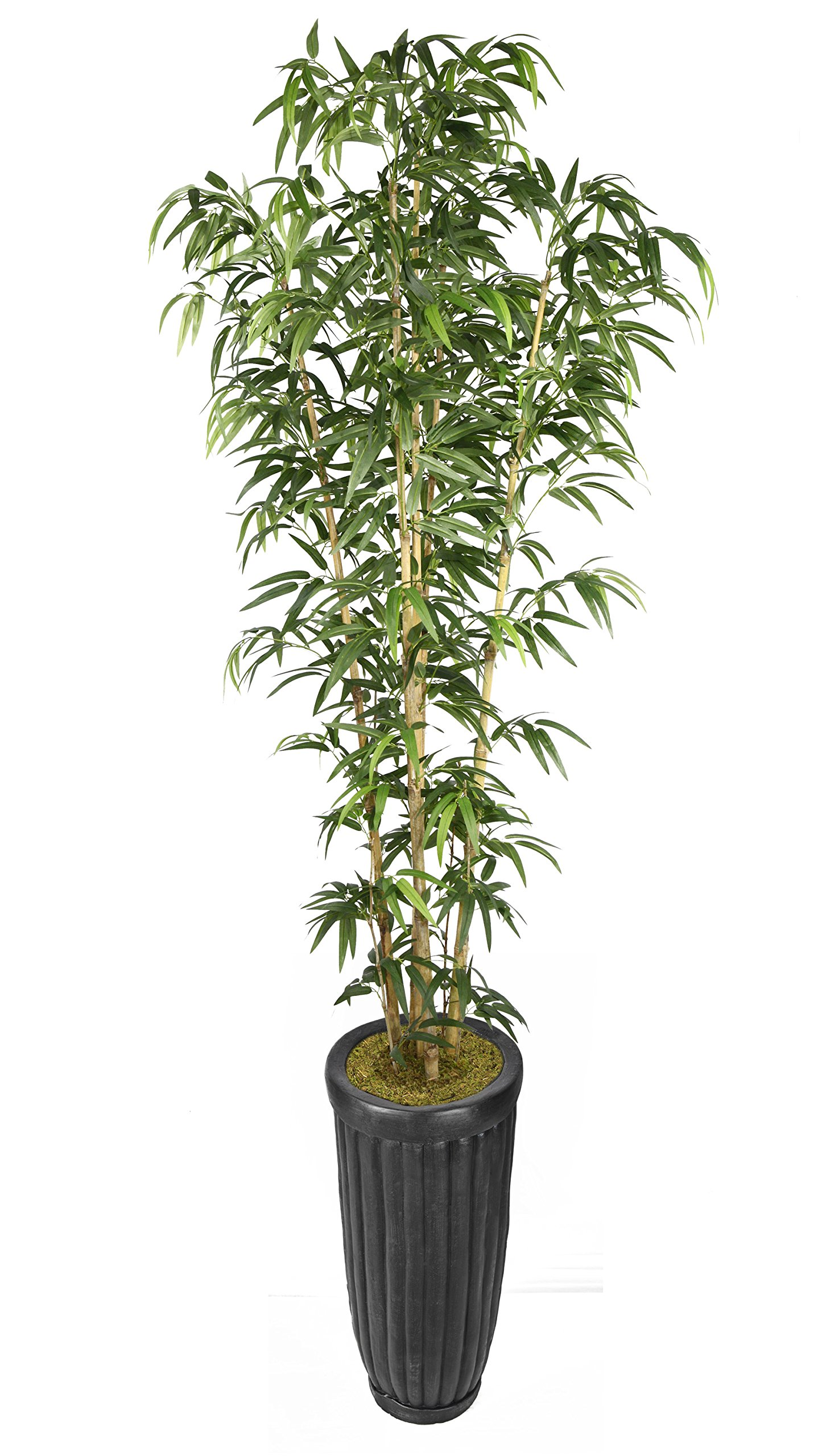 Laura Ashley VHX116218 93'' Bamboo Tree in Natural Poles in Planter Tree by Laura Ashley (Image #1)