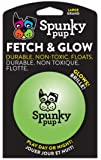 Spunky Pup Fetch and Glow Balls