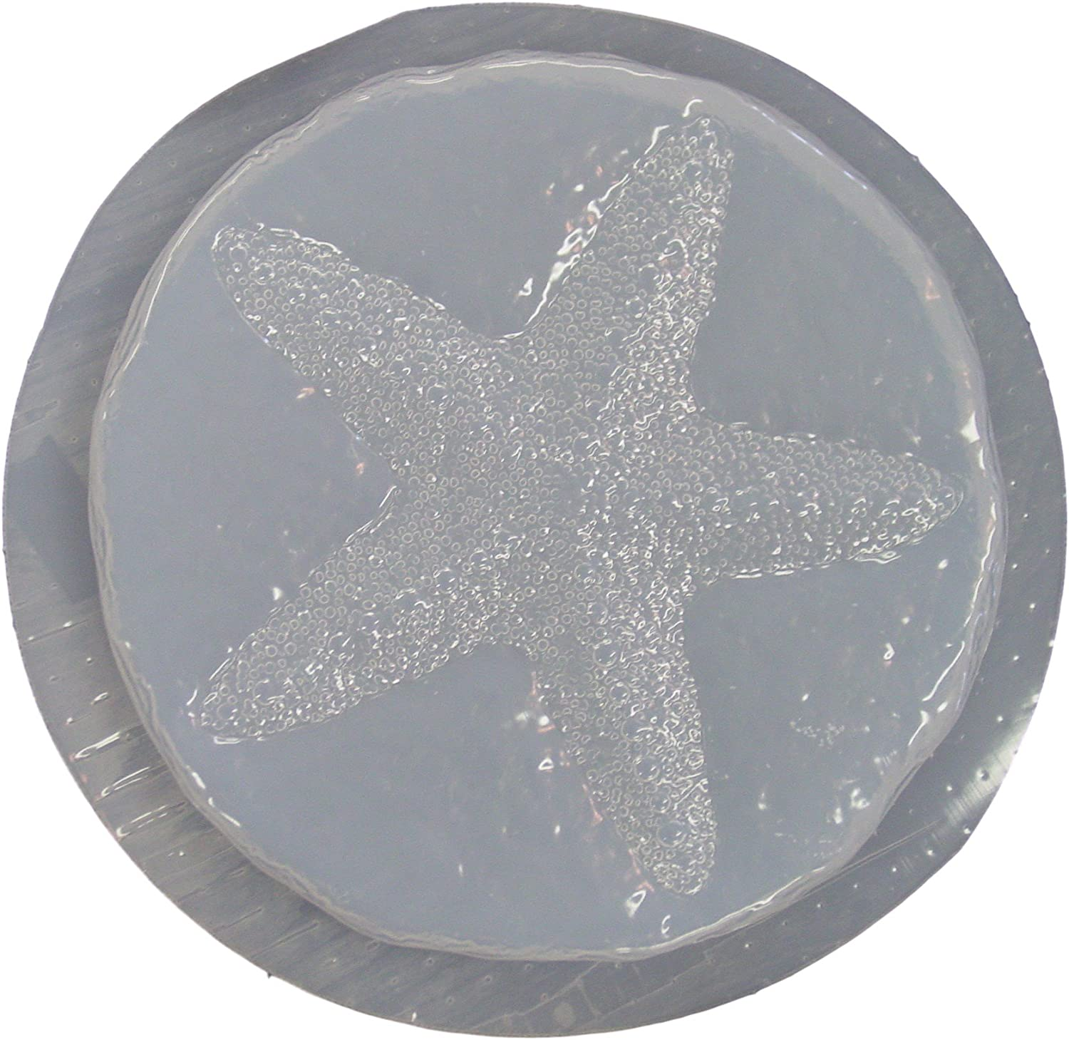 "Starfish stepping stone mold concrete plaster abs plastic mould 12/"" x 2/"" thick"