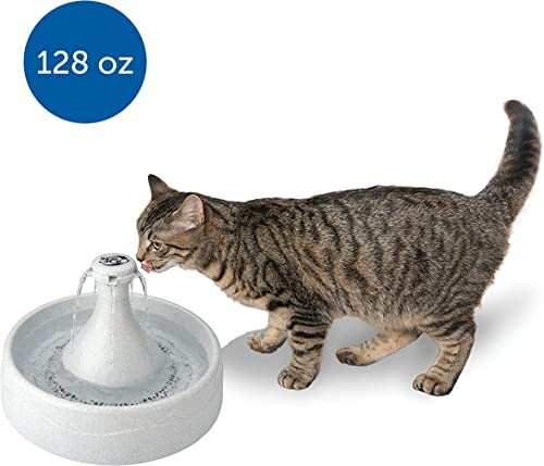PetSafe Drinkwell 360 Cat and Dog Water Fountain – Automatic Drinking Dispenser for Pets – 128 oz
