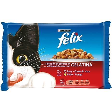 Purina Felix Gelatina comida para gatos con surtido de carnes 10 x [4 x 100 g]